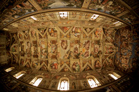 A fish eye's view of the Sistine Chapel